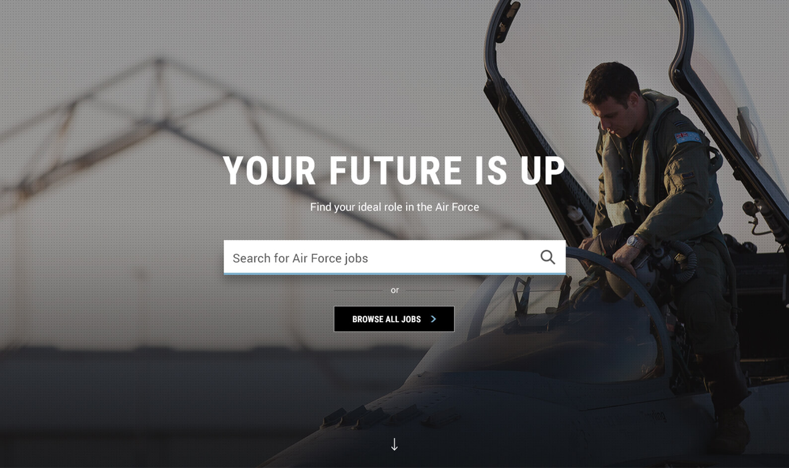 defencejobs-services-airforce